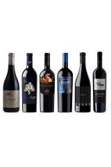 High Intensity Wines