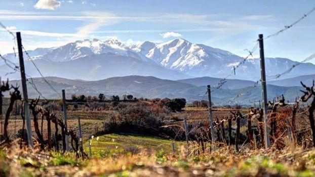 Chimeres 2014 Roussillon